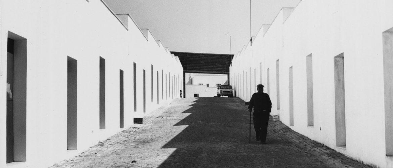 Les Universalistes, 50 ans d'architecture portugaise