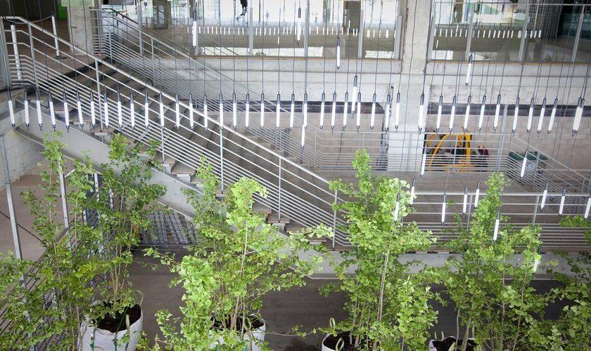 Jardin en stock aux Docks, à Paris