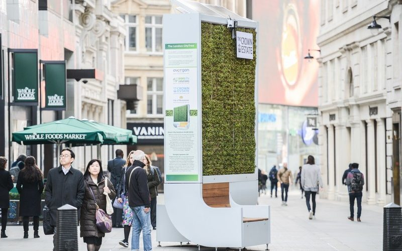 City Tree, le mobilier urbain qui absorbe la pollution