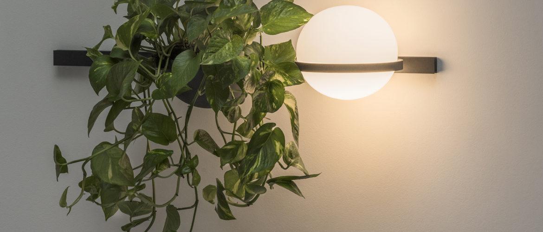 Remettre la nature au coeur de la lumière, l'ambition d'Antoni Arola avec la collection Palma