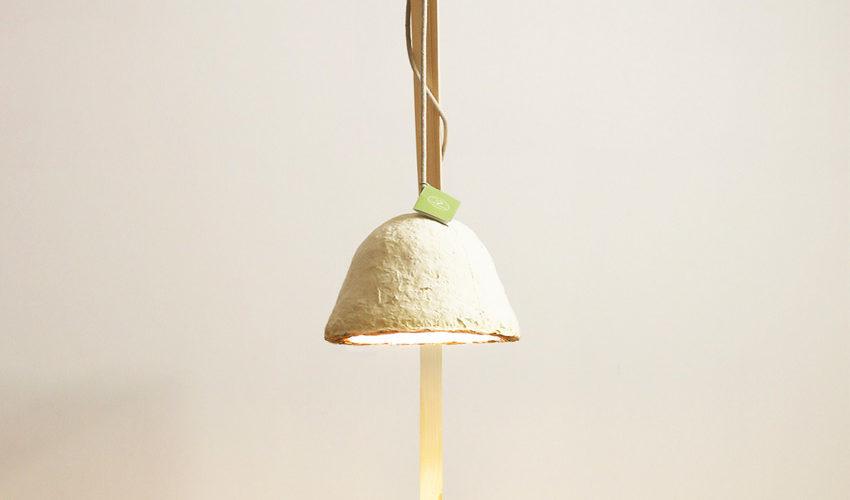 Caroline Pultz : des champignons à la lumière !