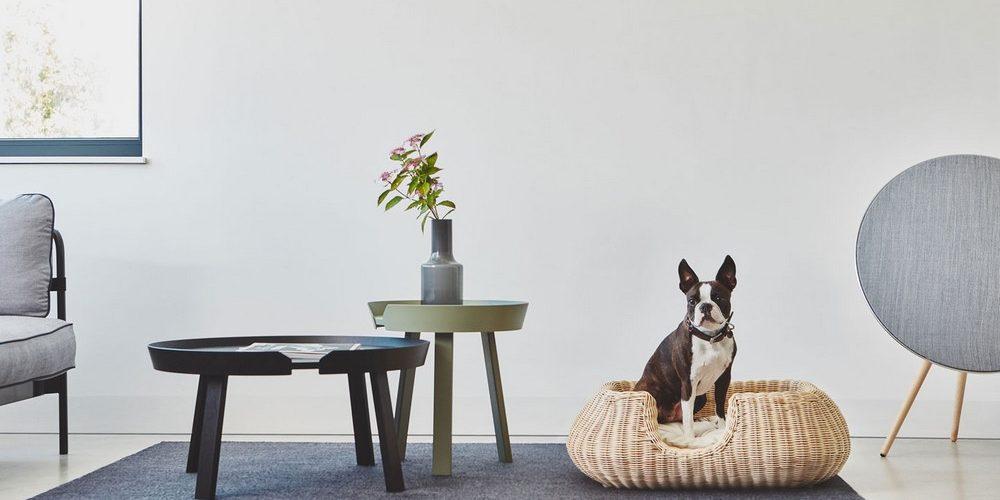 MiaCara – Quand le design parle également aux animaux…